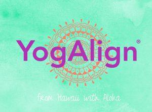 Yogalign-koerper-raum-yoga-kurs-berlin